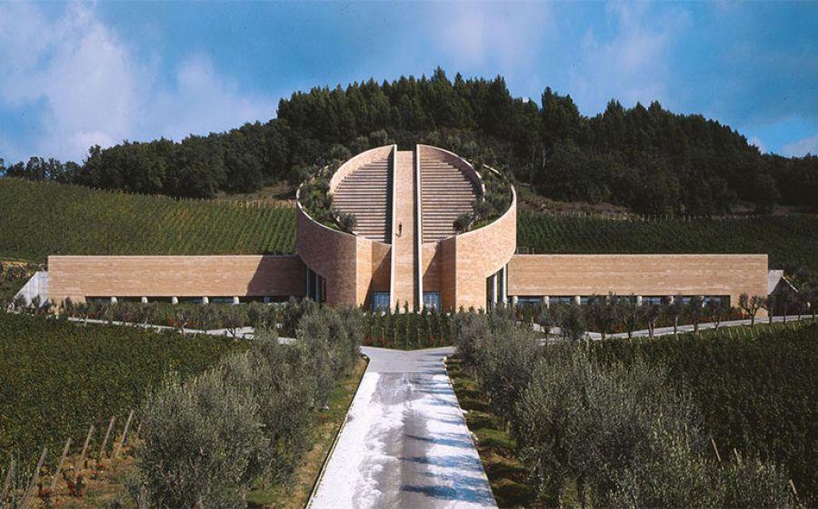 Storia moderna del vino italiano: un libro nella storia dei nostri vini e della nostra bella agricoltura