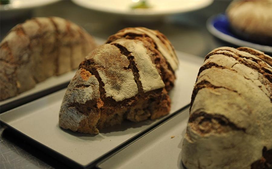 GRANI FUTURI evento nazionale del pane a San Marco in Lamis nel Gargano